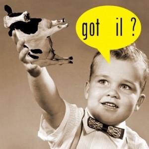 Got IL Cow Small